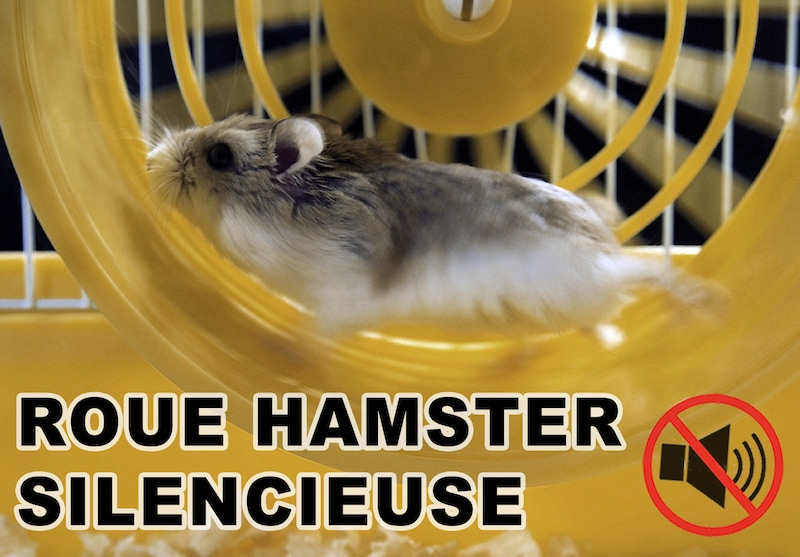 7 meilleures roues hamster silencieuses